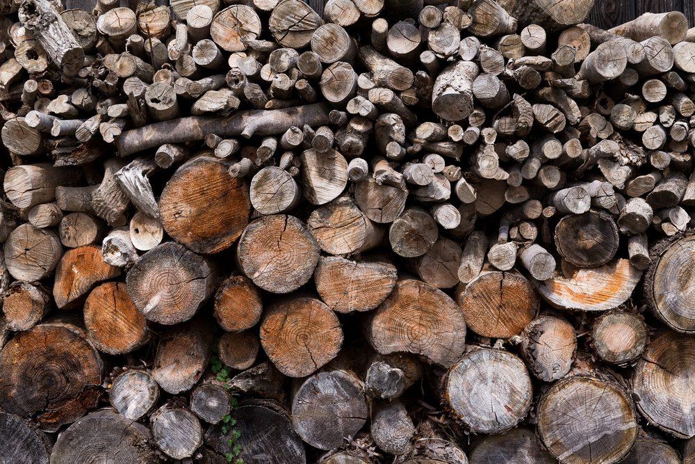 madeiradepinheiro